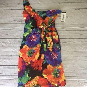 NWT Joseph Ribkoff Floral Dress